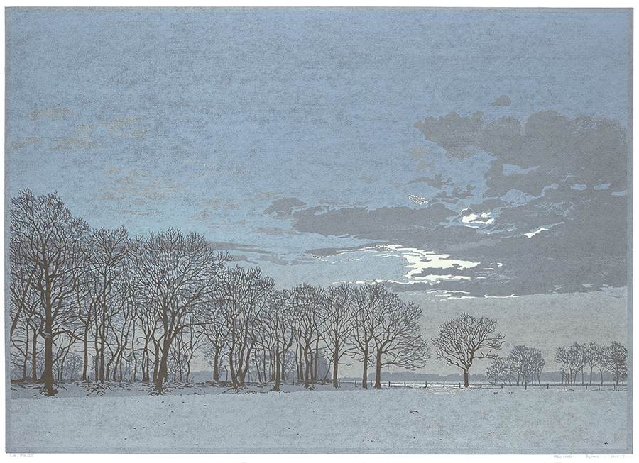 Landscape 2013-I - GRIETJE POSTMA - woodcut printed in colors