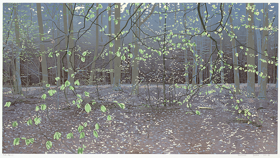 Landscape 2011-III - GRIETJE POSTMA - woodcut printed in colors