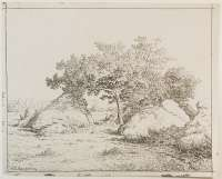 Le Cerisier de la Plante-à-Biau (The Cherry Tree at La Plante-à-Biau) -  ROUSSEAU
